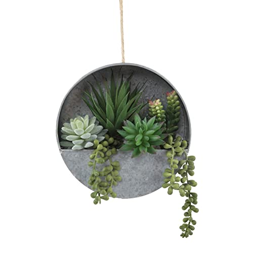 Buy Flora Bunda Artificial Succulent In 8 Inch Hanging Galvanised Tin Wall Planter Online In Mauritius B07qyprqfm