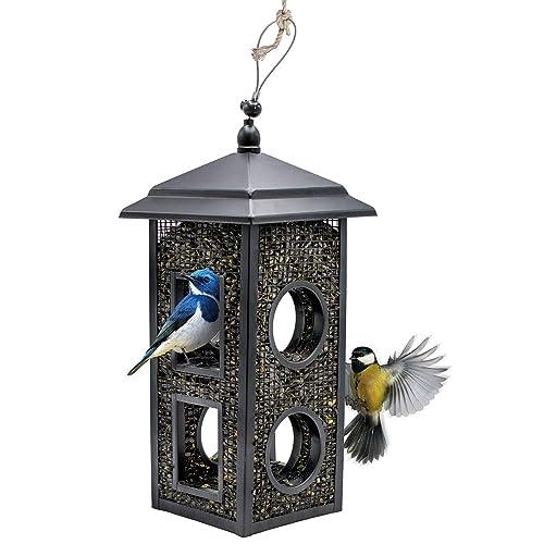 Buy Sorbus Bird Feeder Birdhouse Lantern Style Hanging Wild Bird Feeder Premium Black Iron Design With Hanger Great For Attracting Different Types Of Birds Outdoors Backyard Garden Lantern Style Online In