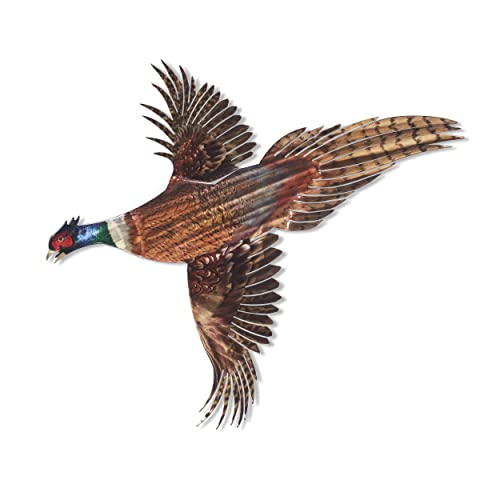 Buy Next Innovations 3d Metal Wall Art Farmhouse Pheasant Wall Decor Handmade In The Usa For Use Indoors Or Outdoors Online In Mauritius B07wdlm9qm